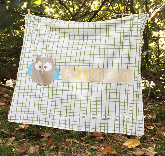 Lil Blue Owl Big Personalized Blanket