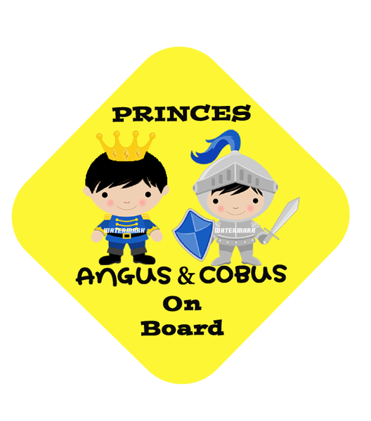 Two Princes Car Sign