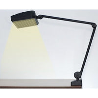 Lamp with Desk Clamp