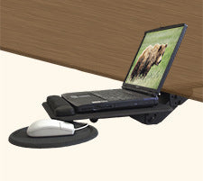 Laptop Workstation Ergonomics