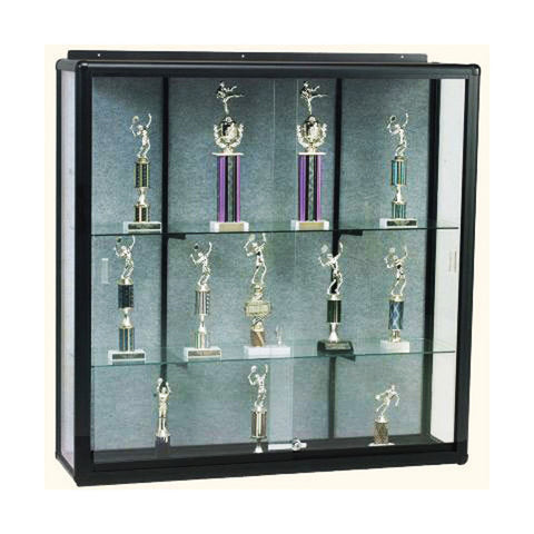 Elite Wall Mounted Display Case - Various Widths