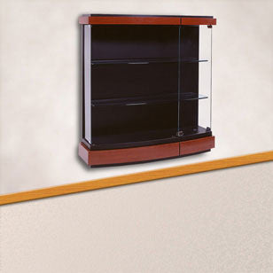 Quantum Series Wall Mounted Display Case
