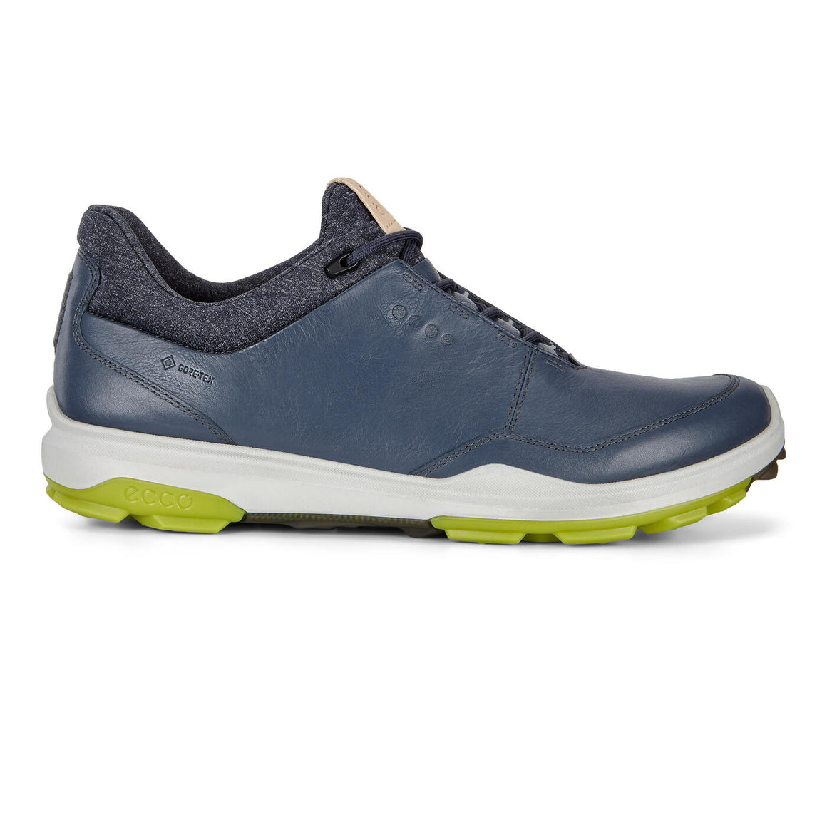 Biom Hybrid 3 Golf Shoe