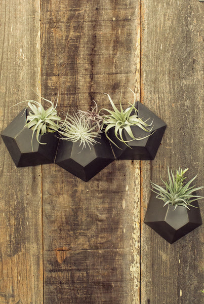 Hexagonal Wall Vase