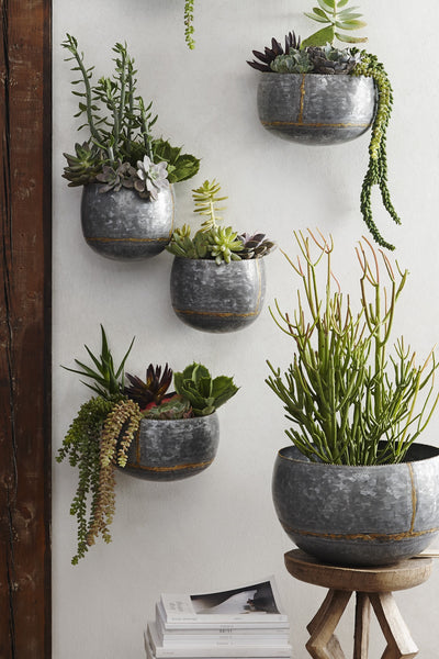 Reclaimed Wood Succulent Planters Dig Gardens