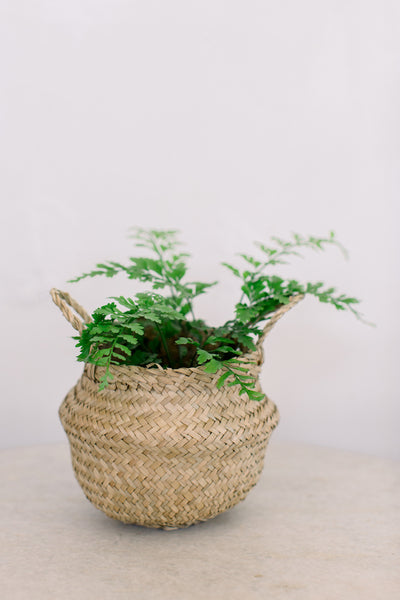 "15""x12"" Seagrass Basket"