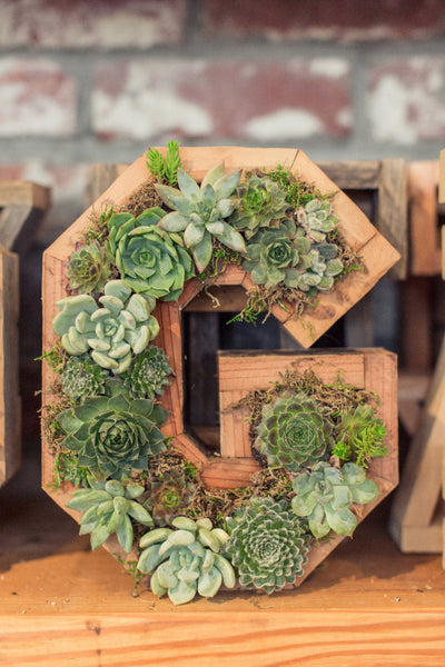 Vertical Succulent Letter or Heart Workshop August 11th at 2PM