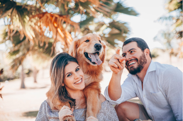 5 Mind Blowing Benefits of Holistic Pet Care