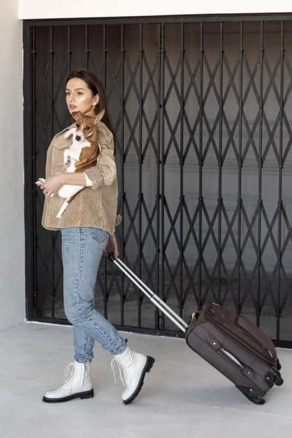 5 Essential tips for flying with your Pet