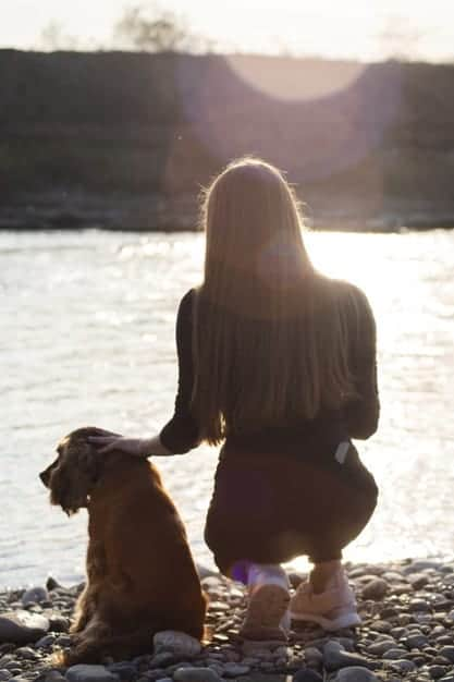Can Dogs Help You Cope With Your Grief