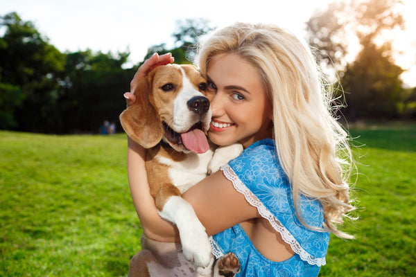Do Dogs Ever Forget Their Previous Pet Owners?