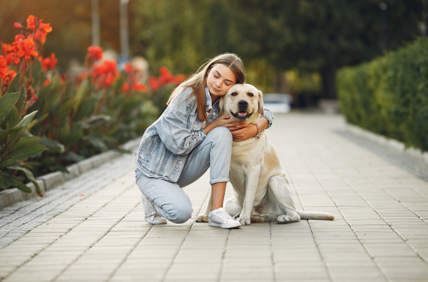 What Animals are Best for Emotional Support?