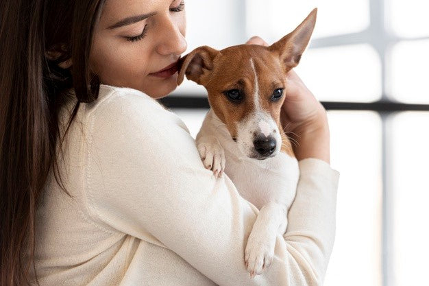 What Causes Seizures in Dogs