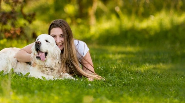 Why Is Adopting a Pet is Better Than Buying?