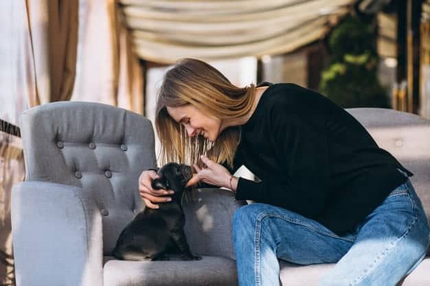7 Perfect Gift Ideas for Pet Owners