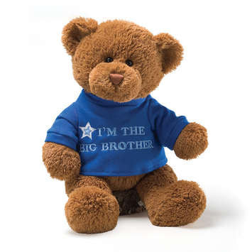 Gund - I'm The Big Brother T-Shirt Teddy Bear, 12""