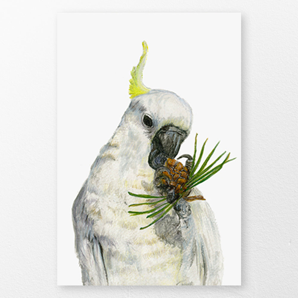 Cockatoo Art Print by Rebecca Garfield