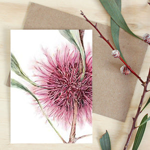 Hakea Art Card