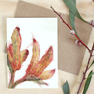 Kangaroo Paw Art Card