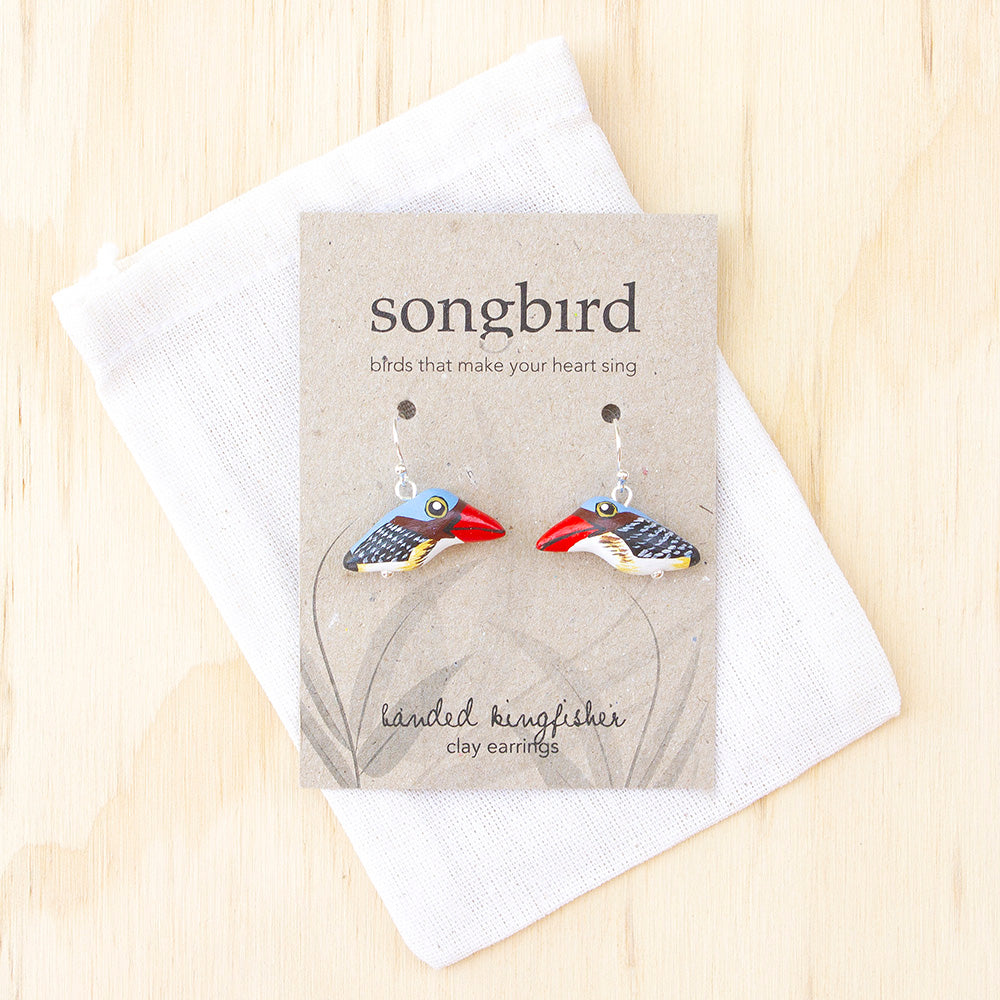 Banded Kingfisher Earrings