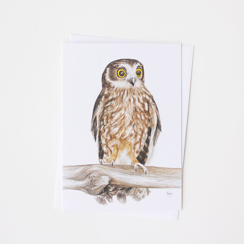 Boobook Owl Art Card by Vanessa Richardson, Tasmania, Jewellery and Gifts for Bird Lovers, Songbird Collection Australia