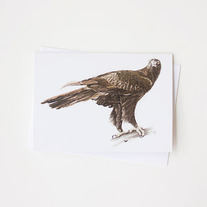 Wedge-Tailed Eagle Art Card