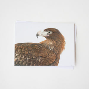 Wedge-Tailed Eagle Profile Art Card