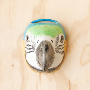 Macaw Wall Vase by Quail Ceramics, Jewellery & Gifts for Bird Lovers, Songbird Collection Australia