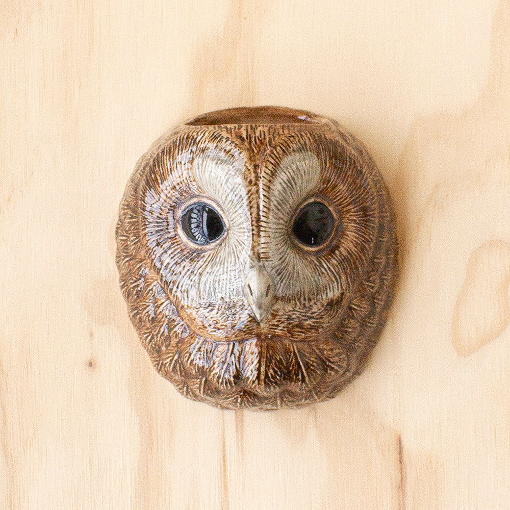 Tawny Owl Wall Vase by Quail Ceramics, Jewellery & Gifts for Bird Lovers, Songbird Collection Australia