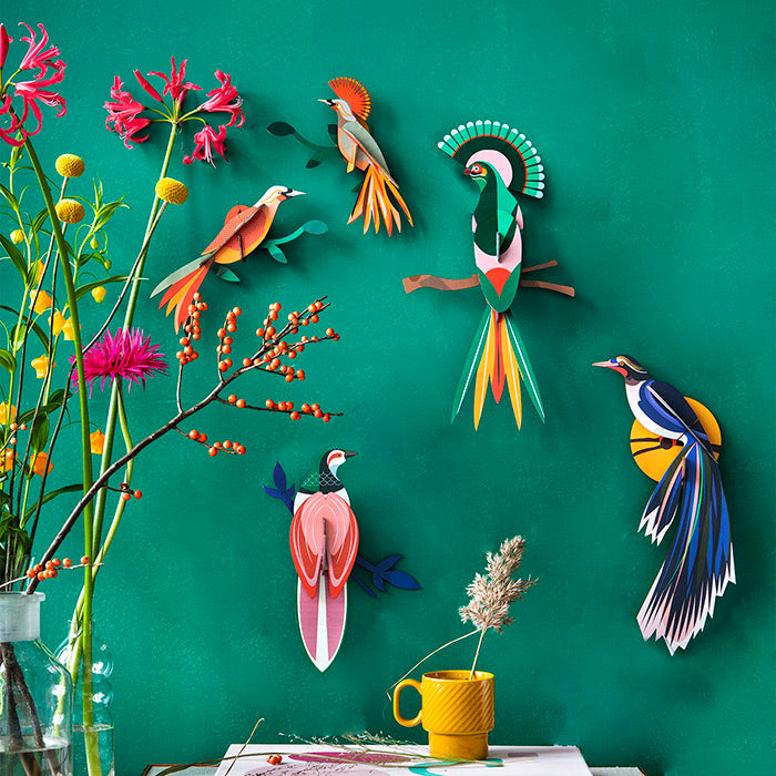 Birds of Paradise Wall Art, Recycled Paper, Designed in the Netherlands by Studio Roof, Songbird Australia