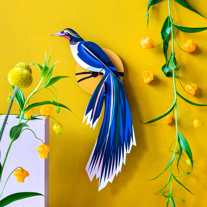 Bird of Paradise Wall Art - Flores, Recycled Paper, Designed in the Netherlands by Studio Roof, Songbird Australia