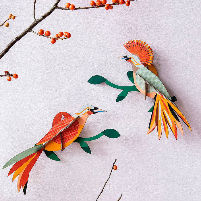 Bird of Paradise Wall Art - Obi, Recycled Paper, Designed in the Netherlands by Studio Roof, Songbird Australia