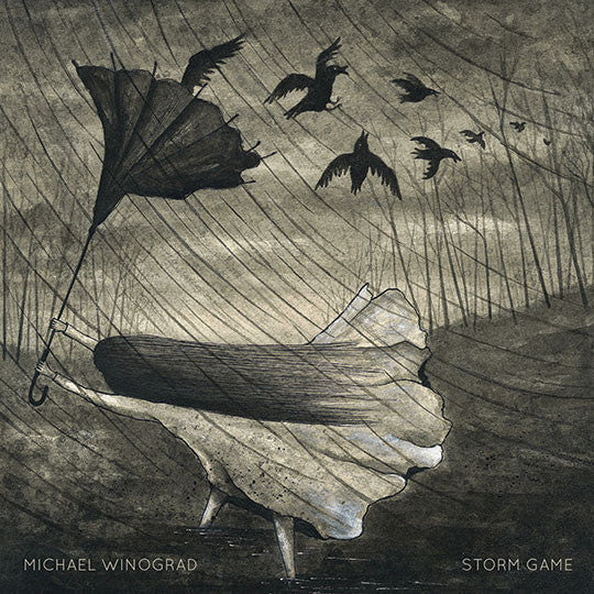 Michael Winograd - Storm Game