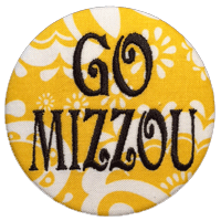University of Missouri - Yellow Paisley