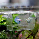 728 ml Transparent Fish Breeding Box Aquarium Breeder Box Double Guppies Hatching Double layer self floating incubator - Itemsforless