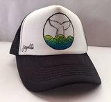 Whale Hat Painted