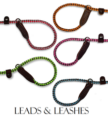 Leads and Leashes