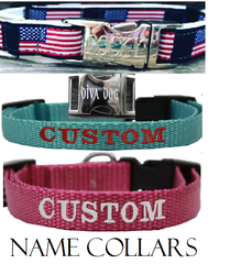Name Dog Collars | Personalized