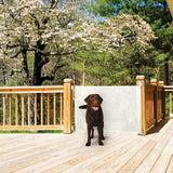 Retractable Pet Barrier can be used outdoors