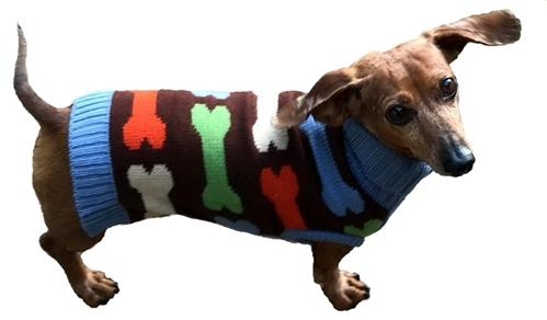 Bones Sweater for Dogs