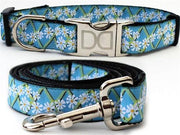 Daisy dog collar and leash