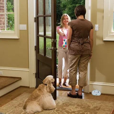 Indoor Ultrasonic Bark Deterrent