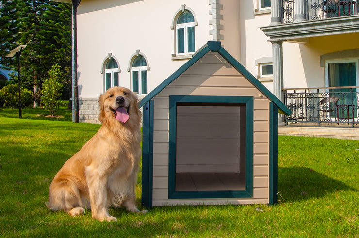 Dog House included Winter Flap