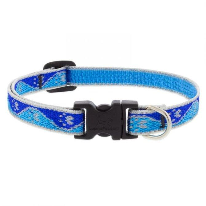 reflective dog collar blue lupine