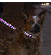 Reflective Dog Lead