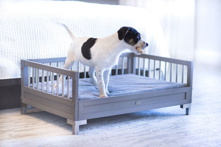 Gray Manhattan dog bed