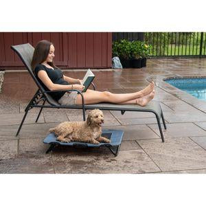 Folding Raised Dog Cot -Lake Blue