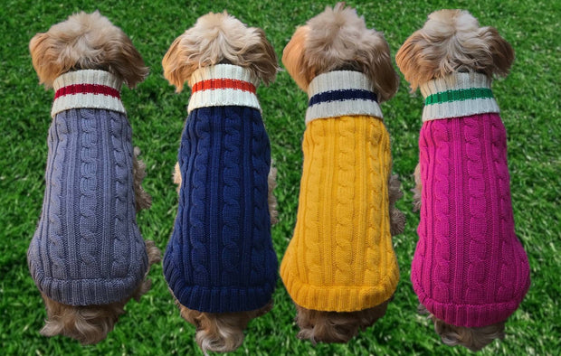 Preppy-dog-sweater-colors