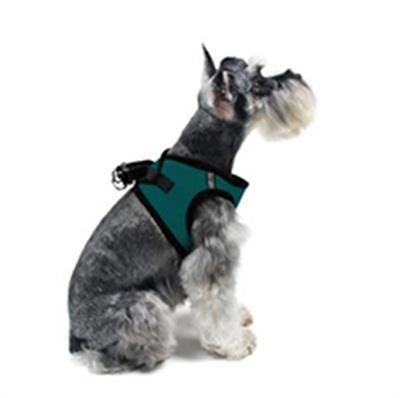 Mesh Dog Harness