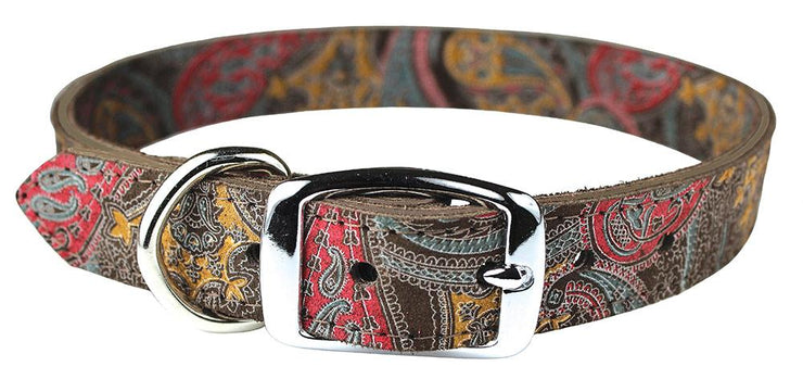 paisley pattern genuine leather dog collar with metal buckle and metal dee ring for lead. color chocolate